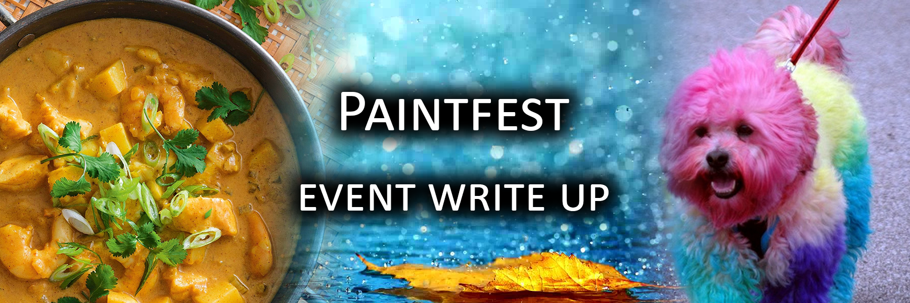 Paintfest Event Writeup